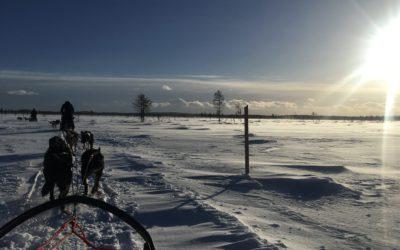 3 dingen die ik leerde op een sneeuwscooter en een hondenslee